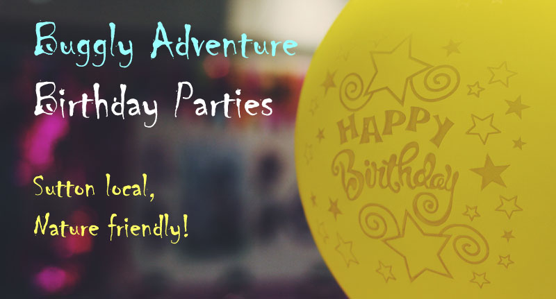 buggle adventure birthday parties cta
